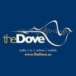 The Dove – K224CN