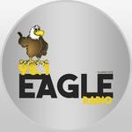 Eagle 95.1 FM – WUPN
