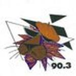 WHCJ 90.3 FM – WHCJ