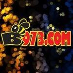 B973 – K247AW