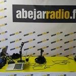 Abejar Radio
