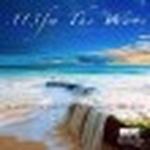 113FM Radio – The Wave