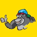 95.3 Gorilla – WZNF