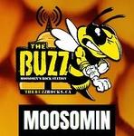 The Buzz Moosomin