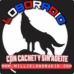 Willie Lobo Radio
