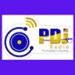 PDJ Radio