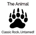 BhamAL Media – The Animal