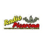 Radio Picarona Villarica-Pucón