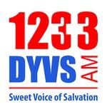 1233 DYVS – DYVS