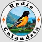 Radio Calandria