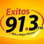 Exitos 91.3 – XHMLS