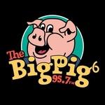 The Big Pig – WPGI