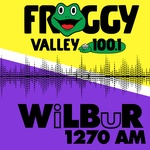 Froggy Valley 100.1 – WFVY