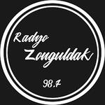 Radyo Zonguldak 98.7