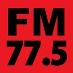 FM-Niigata