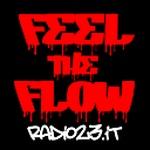 Radio 35 Feel The Flow