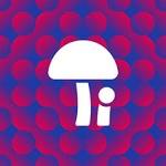 1.FM – BOM Psytrance Radio