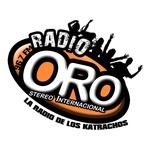 Radio Oro Stereo 96.7