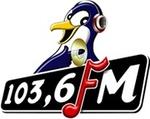 Radio Pinguin FM