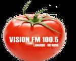 Visión FM
