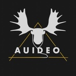 Auideo Radio