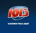 101.3 FM