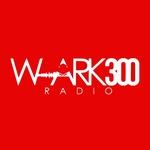 W-ARK 300 Radio