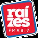 Rádio Raízes FM
