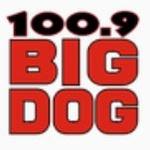 Big Dog 100.9 – CKTO-FM