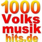 1000 Webradios – 1000 Volksmusikhits