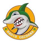 Radio Gozdawa Live