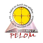 Radio Pelom FM