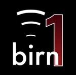 The BIRN – birn1