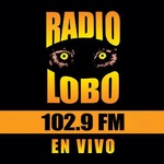 Radio Lobo – KIWI