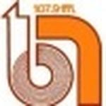 Radio Buena Nueva 106.3