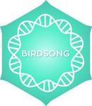 Positivity Radio – Positivity Birdsong