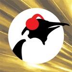 Pinguin Radio – Pinguin Classics