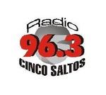Radio Cinco Saltos