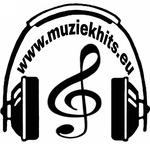 Muziekhits
