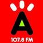 Radio Cima