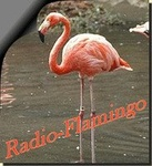 Radio Flamingo
