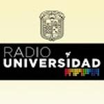 Radio Universidad de Guanajuato – XHSML