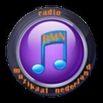 Radio Muzikaal Nederland