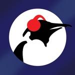 Pinguin Radio – Penguin Blues