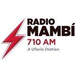 Radio Mambi 710AM – WAQI