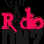 Radio Onzin