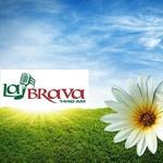 La Brava 1440 – WMVB