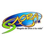 Sacra FM 88.5 – WLUZ
