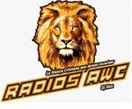 Radio AWC