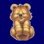 Teddybeer Radio